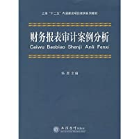 Financial statement audit case study (Yang Gang)(Chinese Edition)