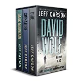 The David Wolf Mystery Thriller Series: Books 8-10 (The David Wolf Series Box Set Book 3)