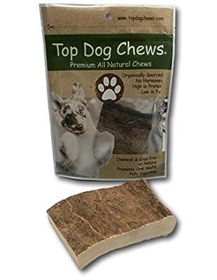 """Top Dog Chews XL Large Moose Panel Antler- Average 4""""x6"""" or Larger - USA Shed Antler Chew - Single Antler"""