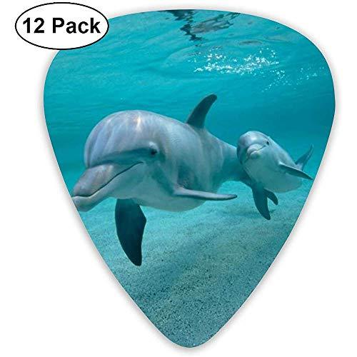Sherly Yard 12 Pack Púas de guitarra de celuloide Púas con soporte de púas Divertidos delfines bajo el agua para guitarra Bajo Mandolina Ukulele 0.46 mm 0.71 mm 0.96 mm