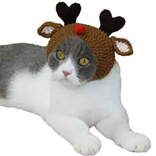 Amscan Pinatas Cat Grigio