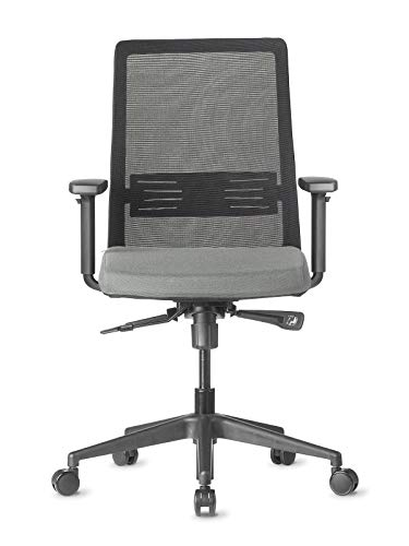AMQ BODI Ergonomic Office Chair, Grey