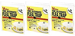 which is the best ultimate flea trap in the world