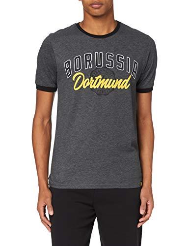Borussia Dortmund BVB-Basic-t-Shirt - Camiseta para Hombre, Hombre, Camiseta, 20210600/3XL, Gris (Dull Grey), XXX-Large