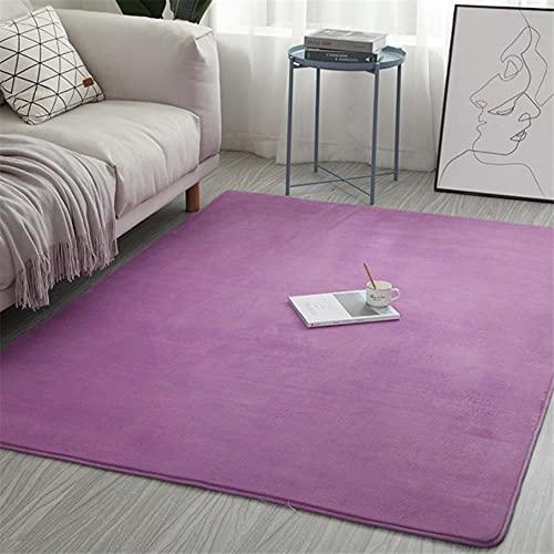 Tappeto in velluto corallo tinta unita assorbimento d'acqua divano tappeto memory foam per camera da letto soggiorno tappeto per bambini yoga-viola, 80x160 cm, Francia