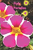 Pink Paradise: Hypothyroidism Hashimotos Journal