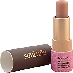 SOULTREE Lotus and Kokum Butter Lip Balm contain organic ghee, Kokum butter and seven organic oils that keep your lips soft and supple.Click to read a curated list of 8 Ayurvedic beauty brands you should know for natural and loving touch with Ayurvedic care #ayurvedicaskincare #ayurvedicaskincarefaces ##ayurvedicaskincareproducts #antiagingskincareproducts