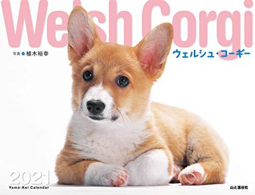 カレンダー2021 ウェルシュ・コーギー (月めくり・壁掛け) (ヤマケイカレンダー2021)の詳細を見る