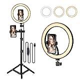 Decdeal TIK Tok - Anillo con trípode de 10,2 pulgadas, 160 LED, lámpara anular ajustable con 3 modos de iluminación + 10 niveles de luminosidad, anillo Light para Youtube vídeo, maquillaje, fotografía