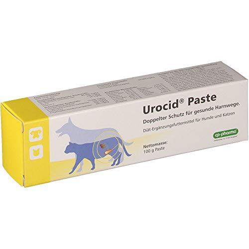 Urocid Paste bei Blasenbeschwerden