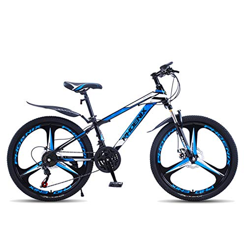 Axdwfd Kids Bike 20 Inch Mountain Bike, High Carbon Steel Variable Speed Bike, With Mudguard And Rear Bracket Design Bicycle (Color : C)