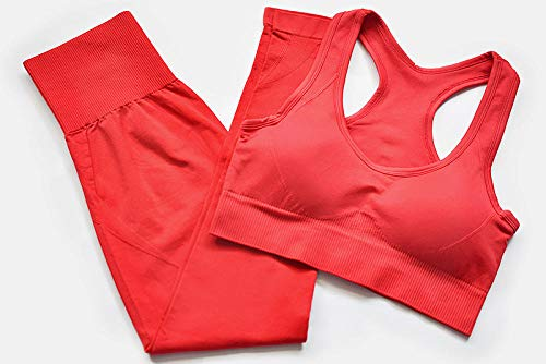 Jogging Deportivo Yoga Mujer,Yoga Seamless Gym Clothing Conjuntos Deportivos, Leggings de Entrenamiento Fitness Pants-Red 2_S