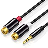 DigitalLife 3.5mm to RCA Phono Female Cable - 2 Felame Phono to 3.5mm Aux Male Jack for Turntable/Amplifier/Hi-Fi System