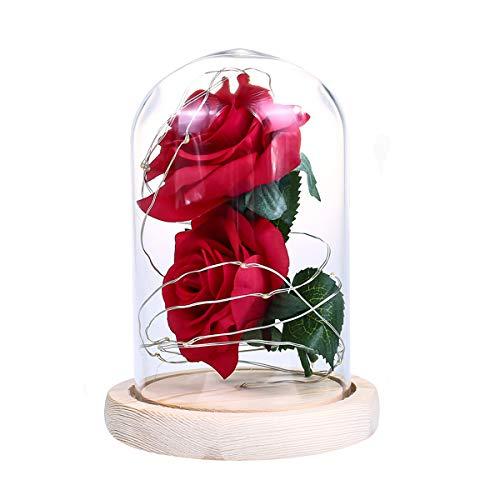 Flor de rosa en cúpula de cristal con cadena de luces LED para regalo para ella en cumpleaños, boda, día de San Valentín, día de la madre, aniversario (rojo)
