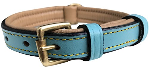 Soft Touch Halsbänder Hundehalsband Luxus Echt Leder, Gepolstert, Small, Turquoise/Beige
