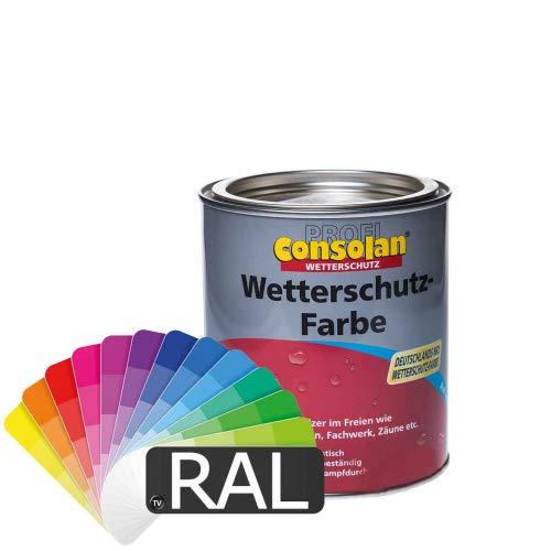 Consolan Profi Wetterschutzfarbe (RAL-Farben) 1l - Holzfarbe Holzschutzfarbe