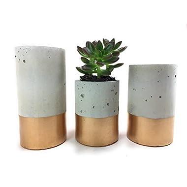 Concrete Succulent Planters / Air Plant Holders. Urba planters (set of 3) Gold.