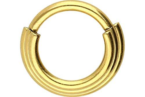 PIERCINGLINE Chirurgenstahl Segmentring Clicker   3 Ringe   Piercing für Septum Tragus Helix   Farbauswahl