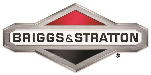 BRIGGS & STRATTON Vergaser