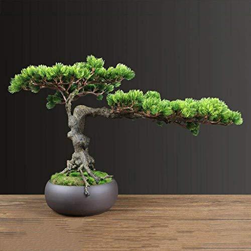 Verde Planta artificial Simulación acogedora sala Planta de tiesto verde del árbol de pino artificial artificial bonsai de interior Nuevo Chino Estilo de estar Mesa de adornos de decoración Planta art