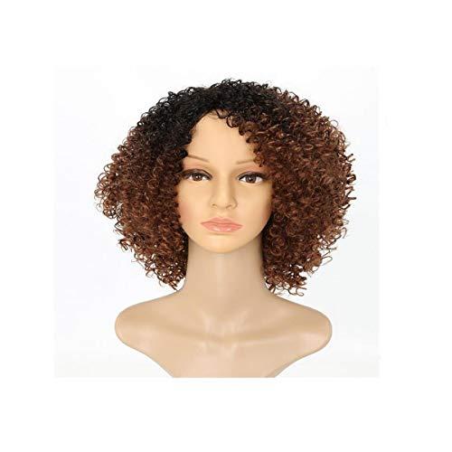 ZNXHNDSH Hnd Peluca, Pelo Rizado Densidad 150% del Frente del cordón Peluca de Pelo Corto Peluca Blob, Regalo, Brown 12 Pulgadas (Color : Brown, Size : 40cm)