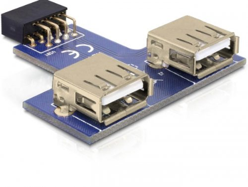 DeLock MBz USB Pinheader Bu > 2X USB2.0-A Bu ne