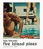 Fire Island Pines (Fotografia)...