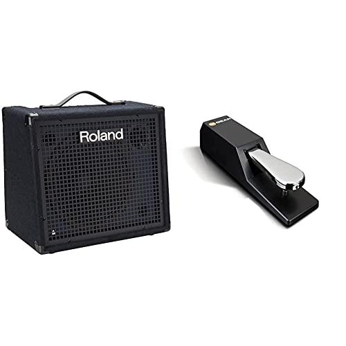 Roland KC-200 4 Channel Mixing Keyboard Amplifier, 100-Watt & M-Audio SP 2 -...