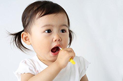 ピジョンPigeon乳歯ブラシセット前歯が生え始める頃から(6~8ヵ月頃)自分でみがくトレーニング