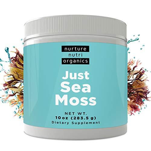 Nurture Nutri Just Sea Moss Powder 10oz / 283g | Sea Moss Organic | Irish Sea Moss Organic Raw | Seamoss Raw Organic | Sea Moss Powder | Irish Moss Powder |