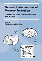 Neuronal Mechanisms of Memory Formation: Concepts of Long-term Potentiation and Beyond by Unknown(2005-09-29)