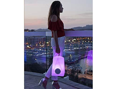 Faralay - Lámpara de exterior LED RGB con altavoz Bluetooth, 39 cm...