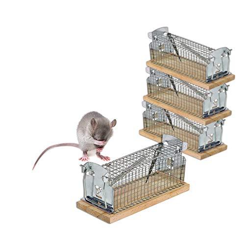 4er Set Lebendfalle für Mäuse & Ratten - Tierfreundliche Version 2.0 mit Schwanzschutz - Draht-Kastenfalle aus Metall & Holz - Mäusefalle Lebend...