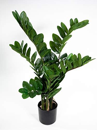 Seidenblumen Roß Zamioculcas Zamiifolia/Glücksfeder 72cm GA Kunstpflanzen künstliche Pflanzen Zamii