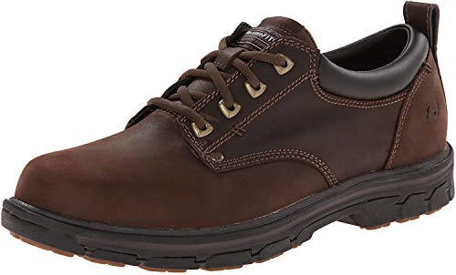Skechers mens Segment Relaxed Fit Oxford golf shoes, Brown, 9.5 US