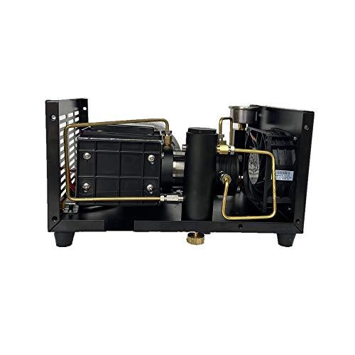 4500psi 300bar 12V PCP Air Compressor High Pressure Pump Compressor for Pneumatic Airgun PCP Air Rifle Inflator (Color : 220V)
