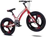 YANGHONG-Bicicleta de montaña Deportiva- Niños Montaña Bicicleta Bicicleta 20'Rueda Niños Junior Boys Mountain Bike Aleoy Disc Freno, Hardtail, Rojo OUZHZDZXC-6 (Color : Red)