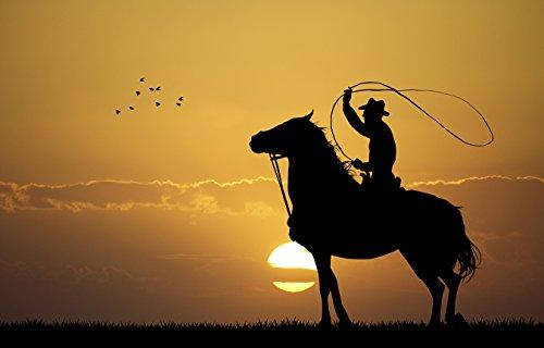 Bilderdepot24 Fototapete selbstklebend Rodeo Cowboy - 360x230 cm