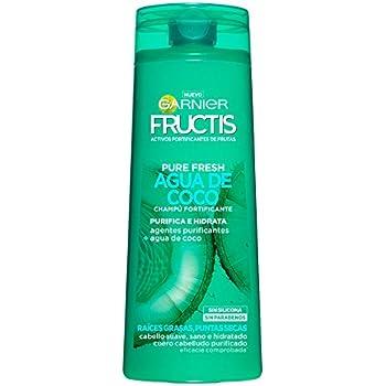 Garnier Fructis Champú Pure Fresh Agua de Coco - 360 ml: Amazon.es ...