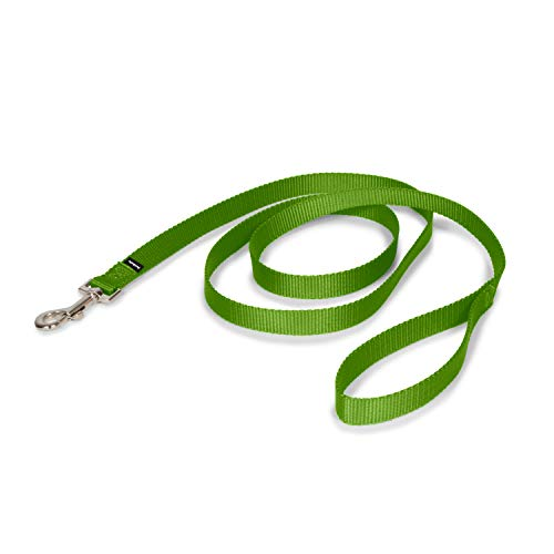 "PetSafe Leash, 3/4"" x 6', Medium, Apple Green"