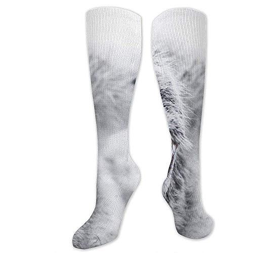 Nero Black//White 213 PUMA Wording Sock 2p Calze Bimbo Unica Pacco da 2 Taglia Produttore: 19//22