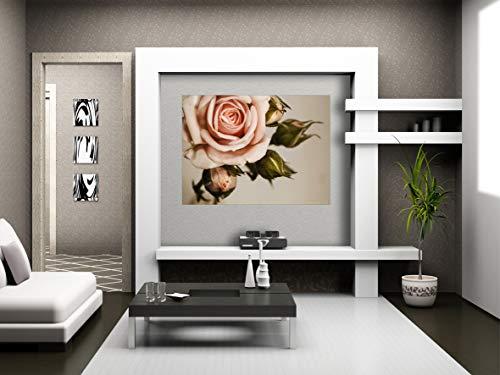 AG Design FTM 0820 roze roze, papier fotobehang - 160x115 cm - 1 stuk, papier, multicolor, 0,1 x 160 x 115 cm