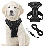 SCIROKKO Reflective Dog Harness and Leash Set for Puppies and Kittens, Soft Mesh Puppy Harness with Leash, Safe Adjustable Pet Vest for Outdoor Training Walking