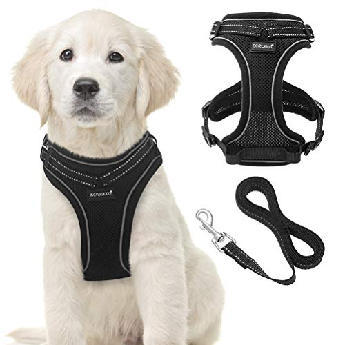 SCIROKKO Adjustable Dog Harness and Leash Set for Puppy and Kitten Training and Walking Outside, with Soft Mesh, Safe Reflective Strips, Double D Ring for Kitty and Doggy