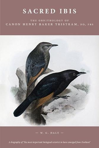 Sacred Ibis: The Ornithology of Canon Henry Baker Tristram, DD, FRS