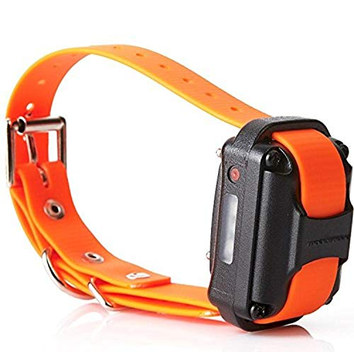 Educator Additional Receiver and Collar for Pro Advanced Dog Training Collar System, Orange