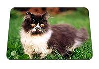 22cmx18cm マウスパッド (子猫草散歩色毛皮毛皮のような) パターンカスタムの マウスパッド