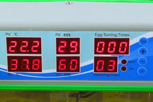 Inkubator VOLLAUTOMATISCH BK55Lux + Zubehör, 55 Eier, Brutautomat, Brutmaschine, sehr leise - 5