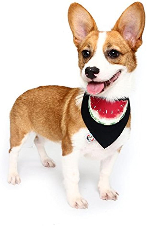Global Brands Online Pet Dog Cotton Personalized Collar Summer Winter Pet Bids Puppy Watermelon Collar