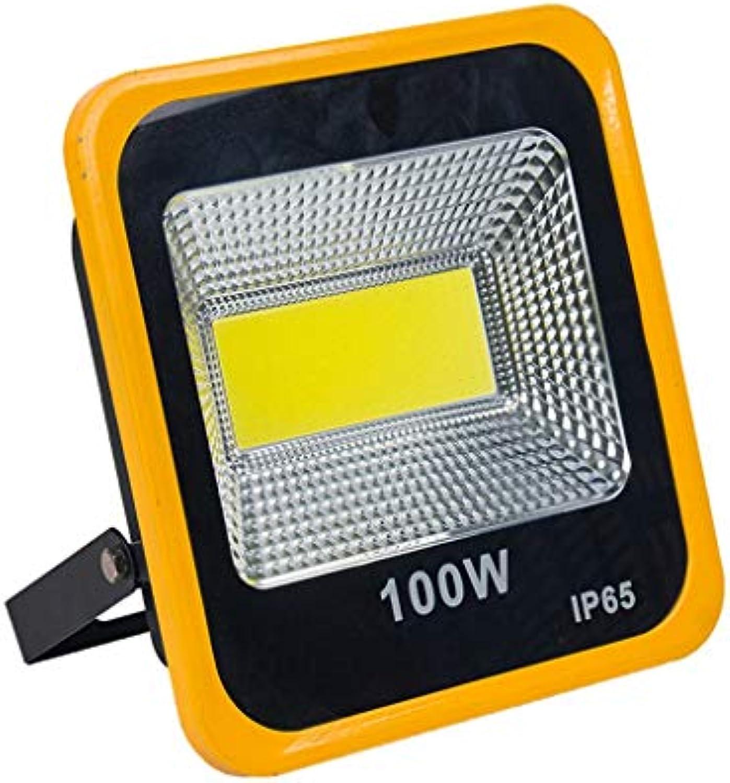 Sgxpjj Flutlichtstrahler LED, Floodlight Outdoor-Sicherheitslicht 30W-200W 220V 6000LM LED IP66 Wasserdicht Tageslichtwei (Farbe   100w)
